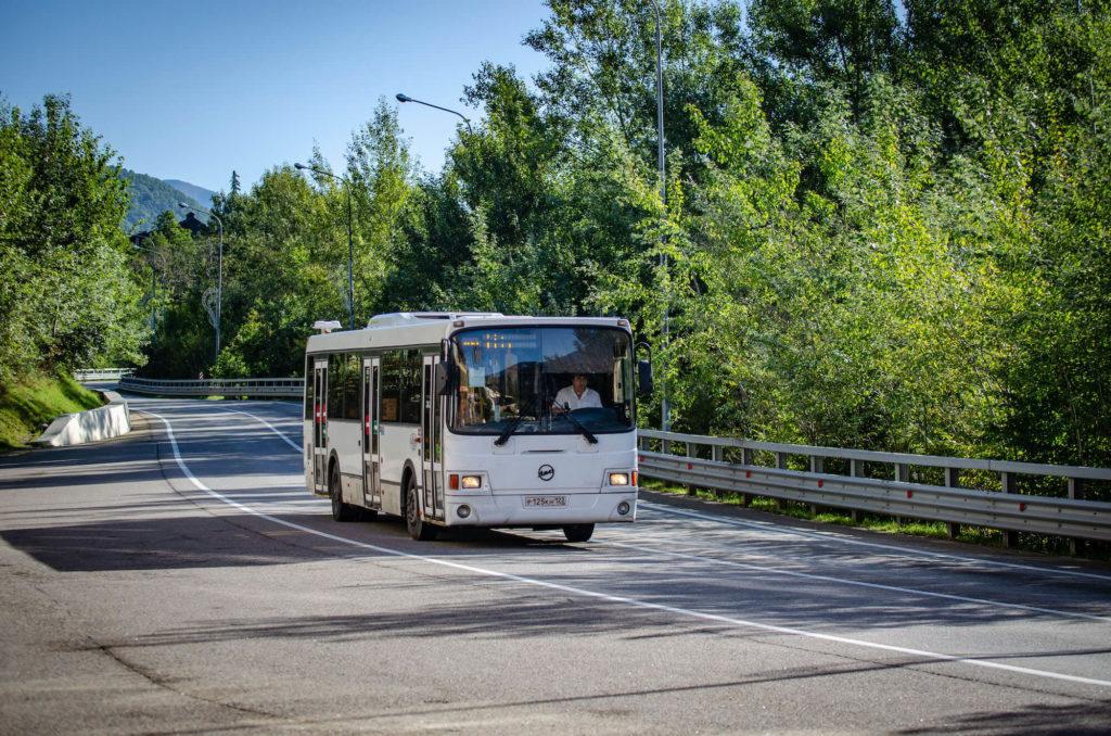 В Сочи отменили дневные автобусы из-за коронавируса