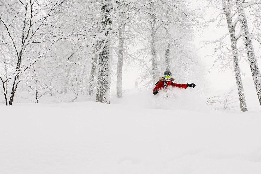 горнолыжный сезон в Красной Поляне