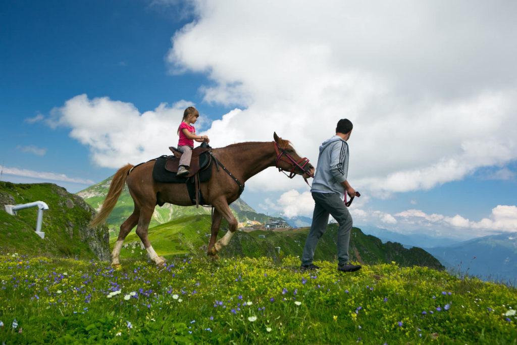 конные прогулки сочи роза хутор